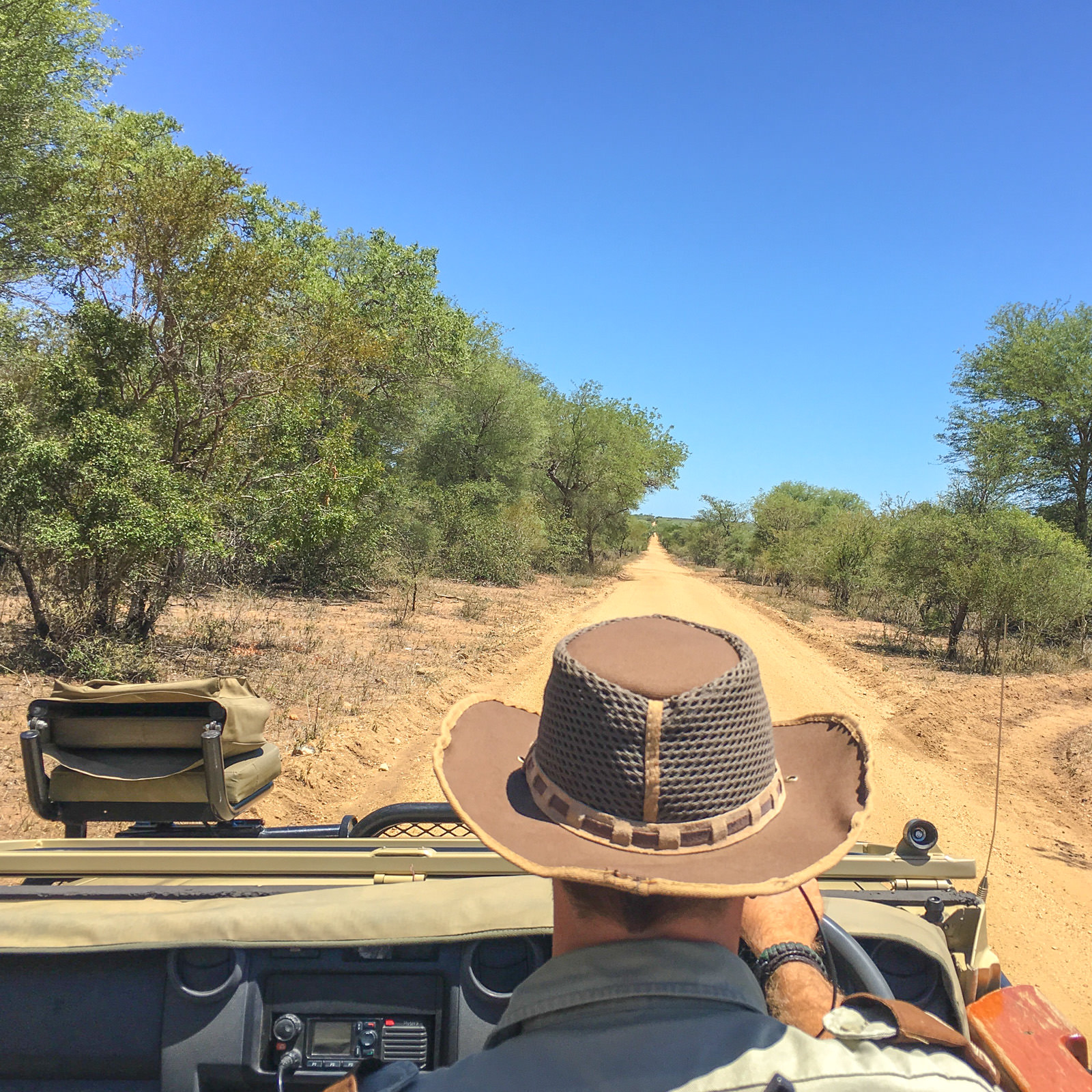 Game drive at Kapama Kruger Park