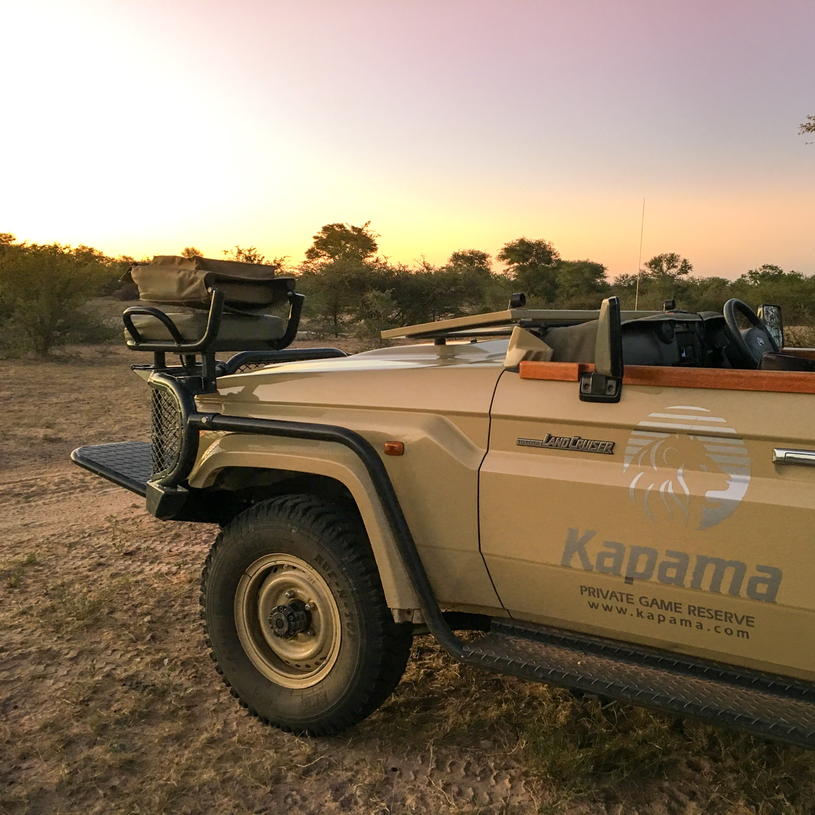 Sunset game drive at Kapama
