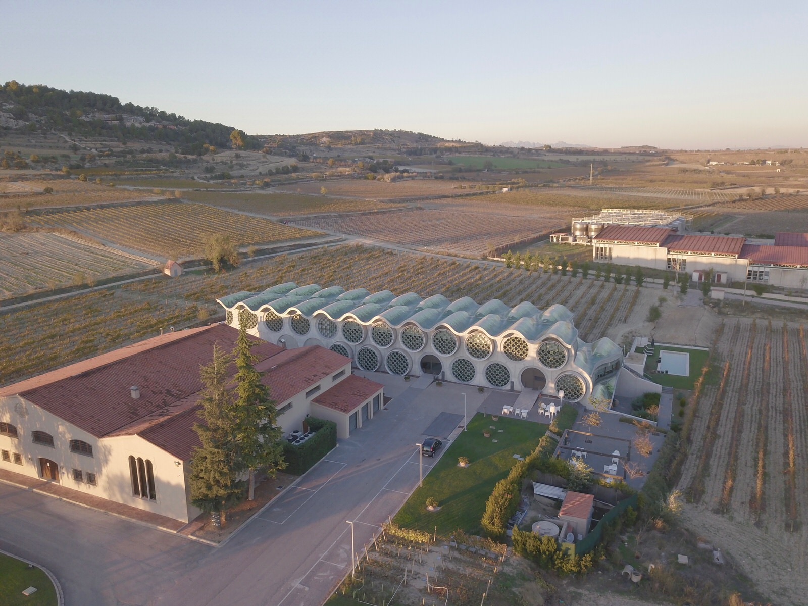 Mastinell drone photo penedes